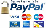 Paypal Approved Payments